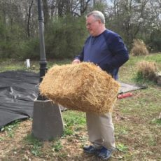 Carrying-straw-bale.jpg